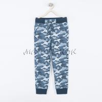Спортивные штаны 19-048м-02