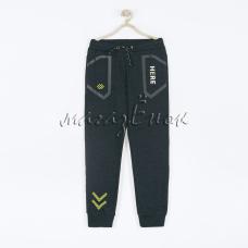 Спортивные штаны 19-048м-03