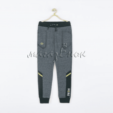 Спортивные штаны 19-048м-04