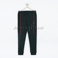 Спортивные штаны 19-048м-06